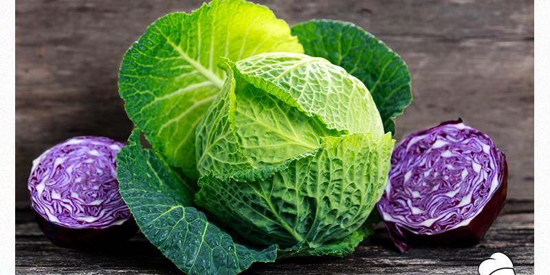 Φάτε το… λάχανο!